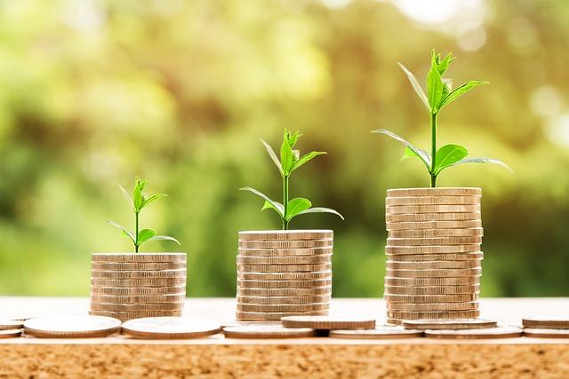 כיצד לבחור בית השקעות
